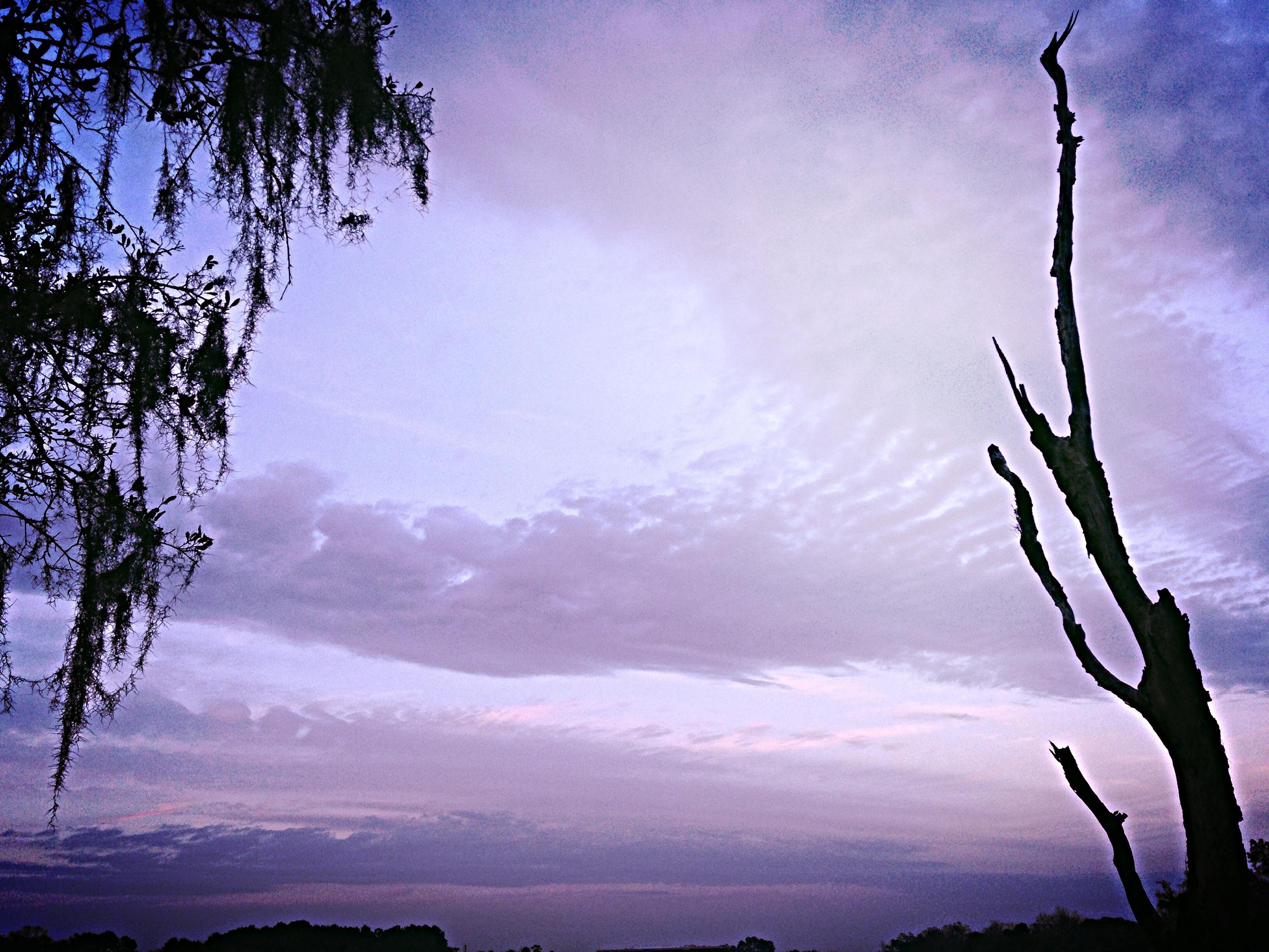 photo 1 (7)1
